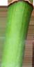 bg_banner